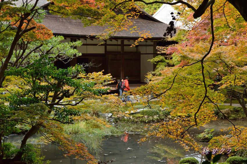 京都4(7)変更済
