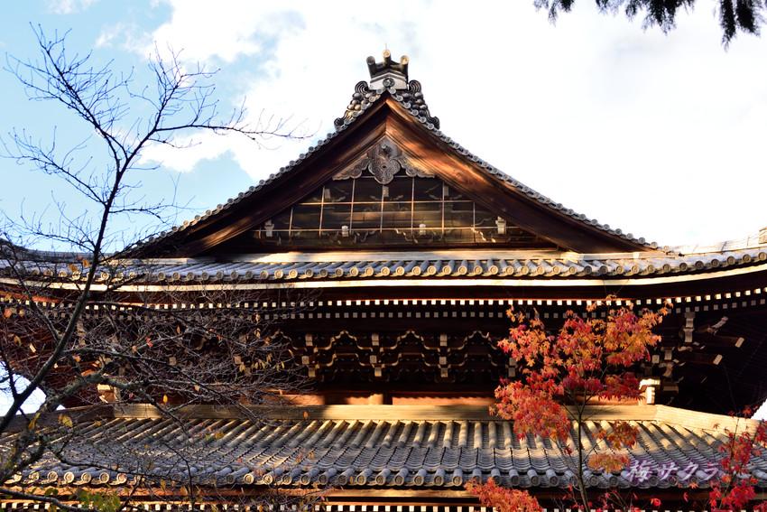 京都5(1)変更済