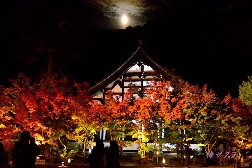 京都6(1)変更済