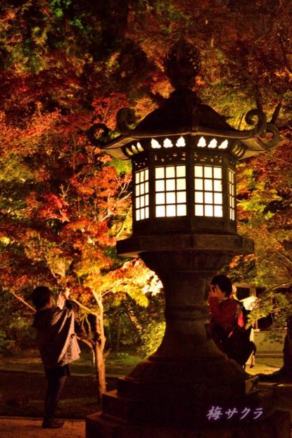 京都6(2-2)変更済