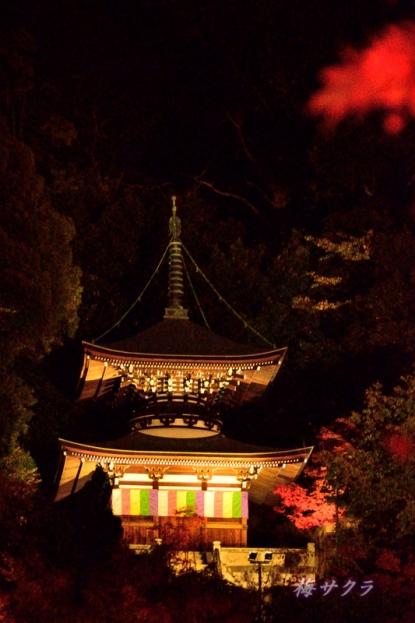京都6(10-1)変更済