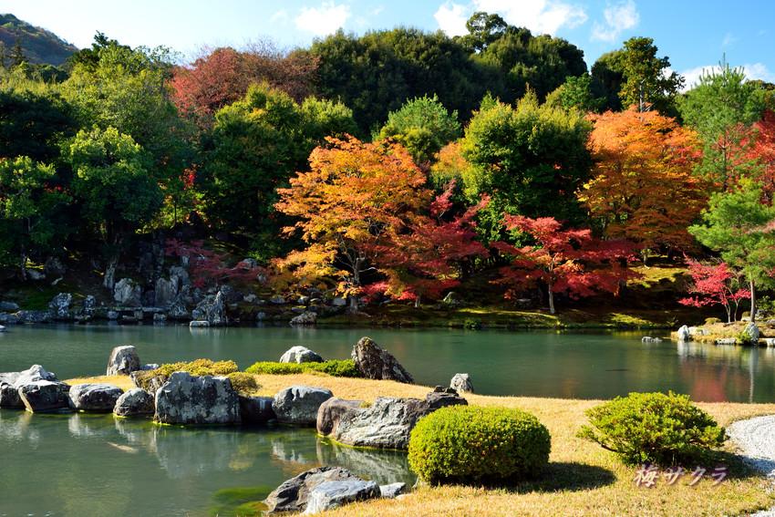 京都7(7)変更済