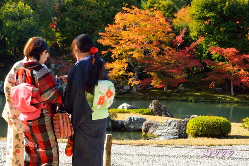 京都7(8)変更済