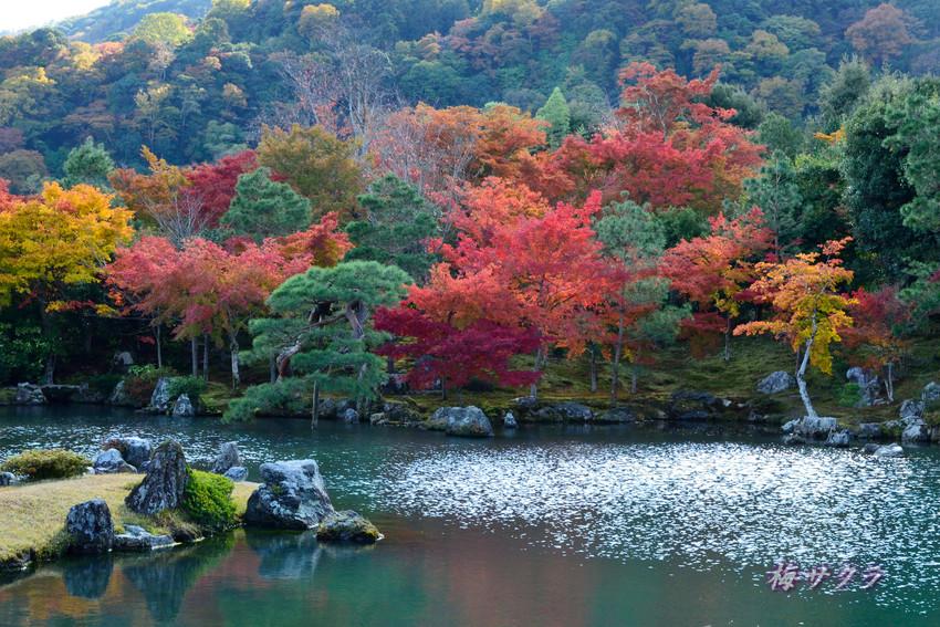 京都7(10変更済