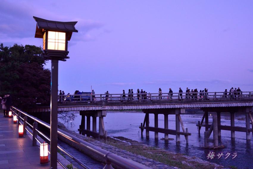 京都8(10)変更済