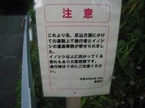 IMGP8769.jpg