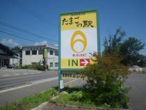 IMGP9064.jpg