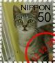 ニャン友ねっとわーく北海道