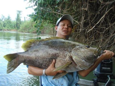 2011年 パプアニューギニア パプアンバス釣行 メンバー募集!!