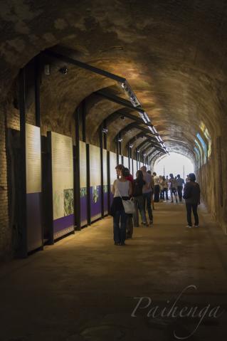 なんか展示してあるトンネル
