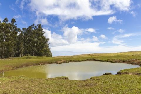 ガラガラ池