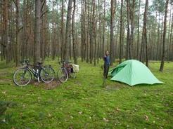 099/9の野営地 Siemiatyczeを出てすぐの道路脇の松林の中_サイズ変更