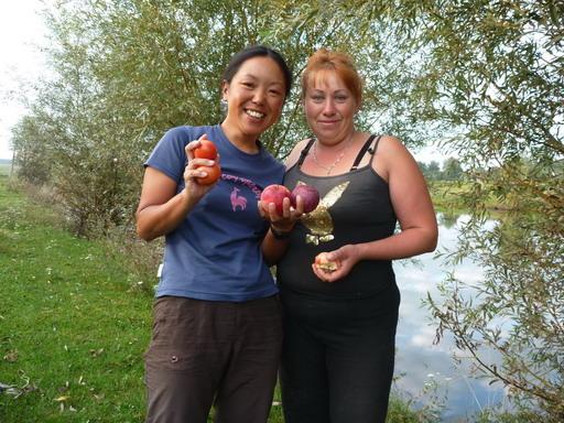 リンゴをくれた近所のおばちゃん_サイズ変更