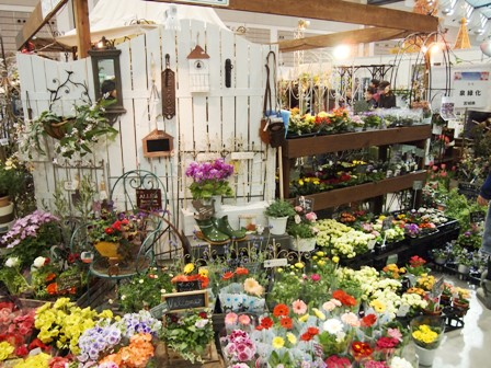 my-garden 099
