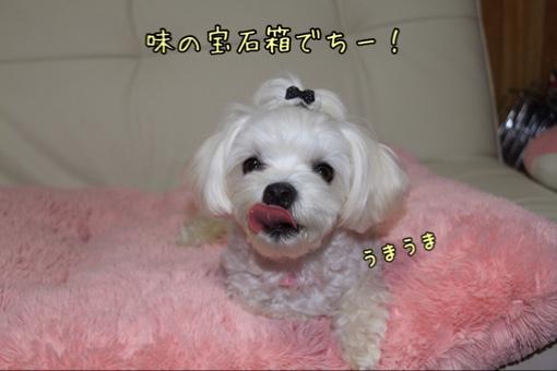 fc2blog_2014101719331698a.jpg