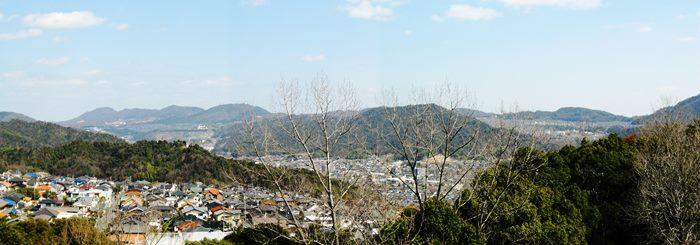 植物園から五月が丘方面