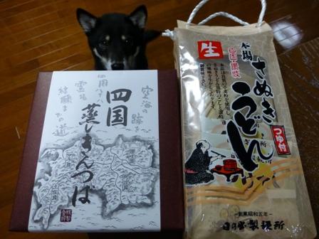 犬用讃岐うどん3