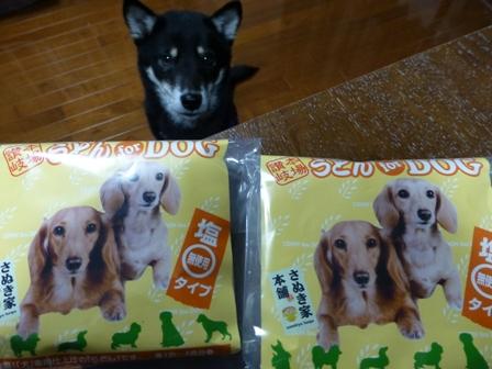 犬用讃岐うどん11