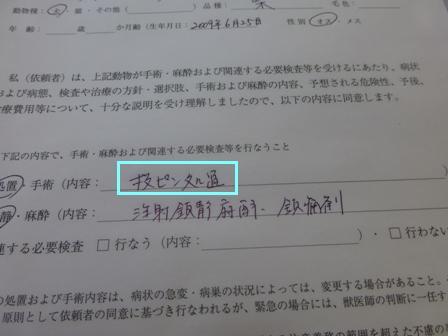 抜ピン処置8