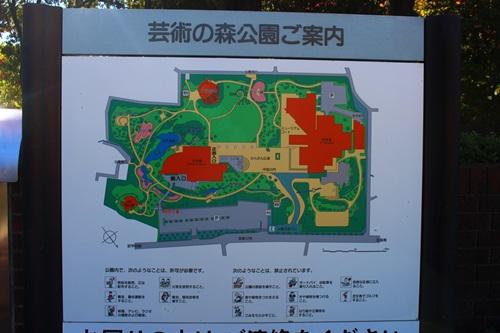 芸術の森公園で紅葉散歩