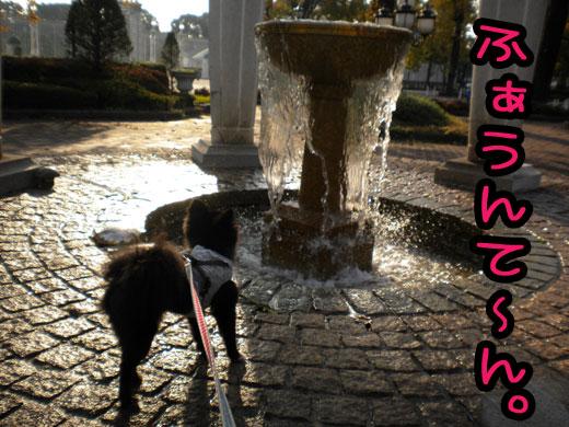 fountaine.jpg