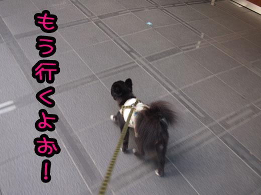 mouikuyo.jpg