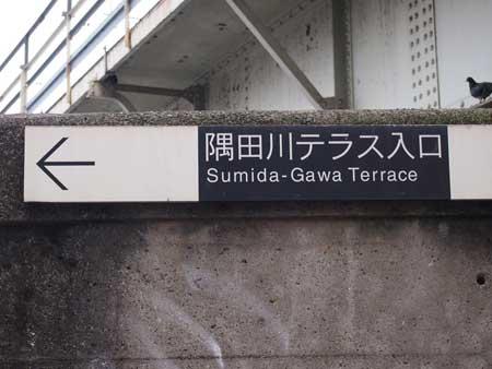 sumidagawaterasu.jpg