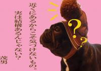 茂男語録3