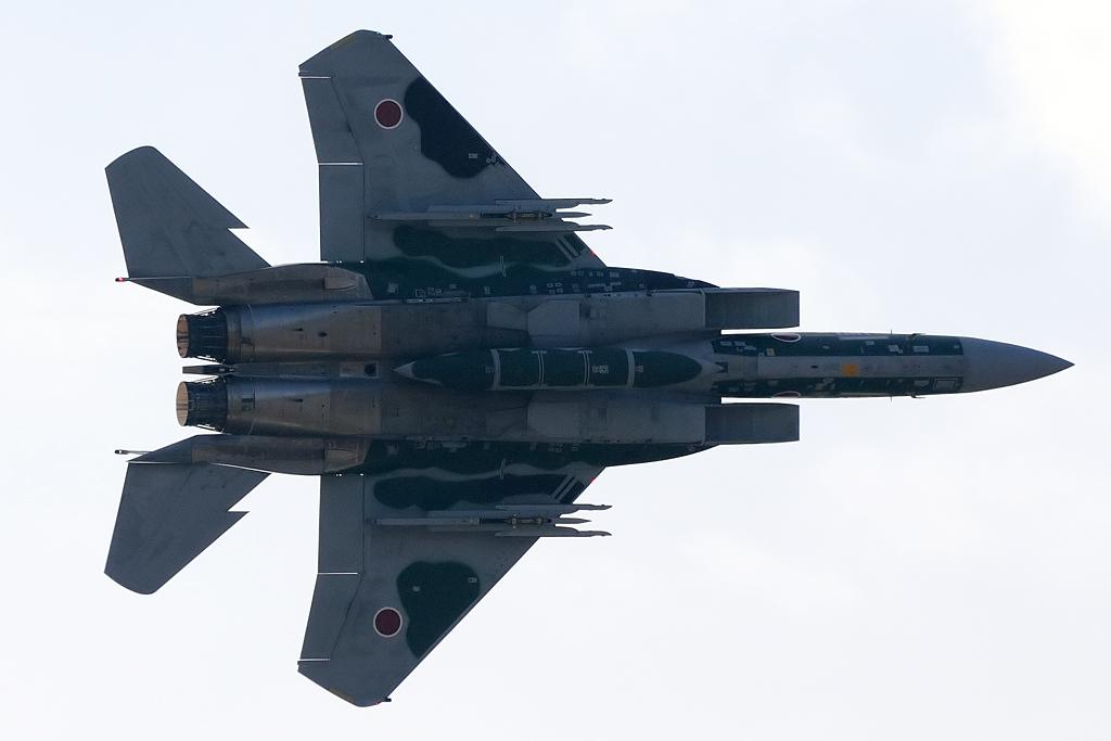F-15DJ アグレッサー