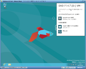 Windows_8_Consumer_Preview_049.png
