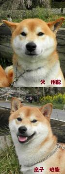 翔龍ママ&珀龍パパ
