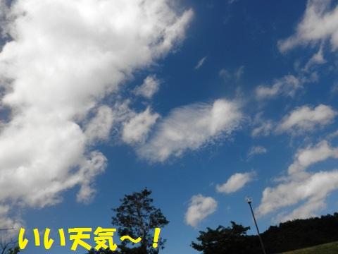 201208011109504b3.jpg