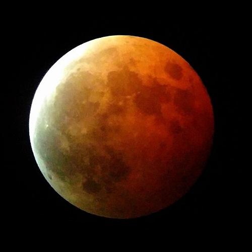 見事!田原中天文台から皆既月食 !!①