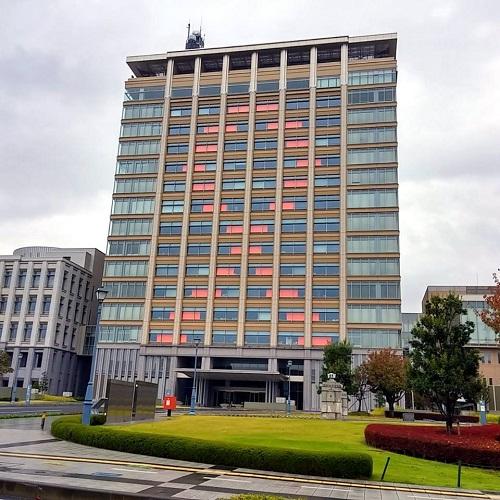 栃木県庁が巨大『オレンジリボン』に!
