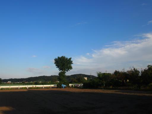 20140921・藤岡空11