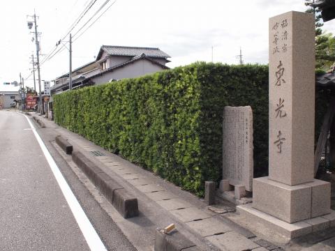 槇の木 壁