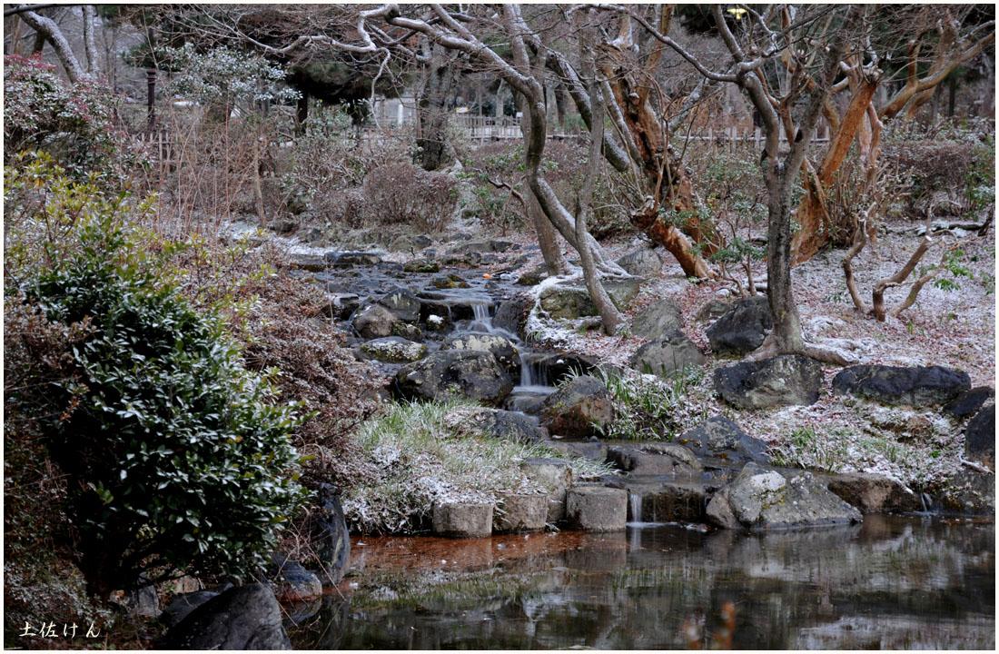 丸山公園2