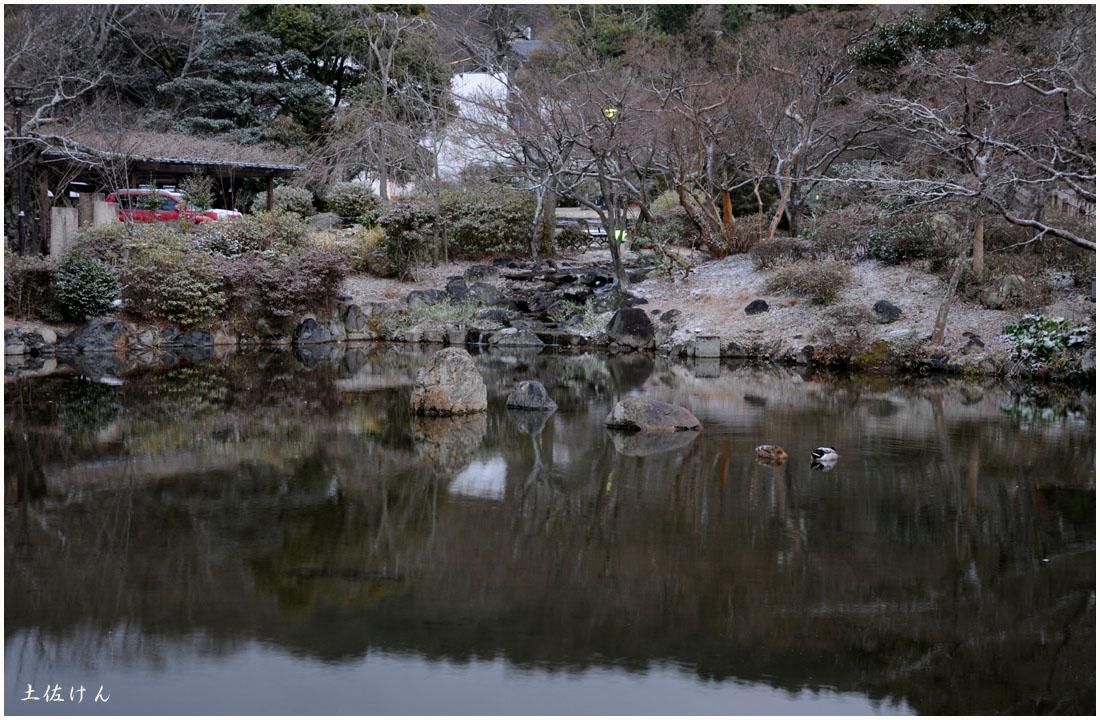 丸山公園3