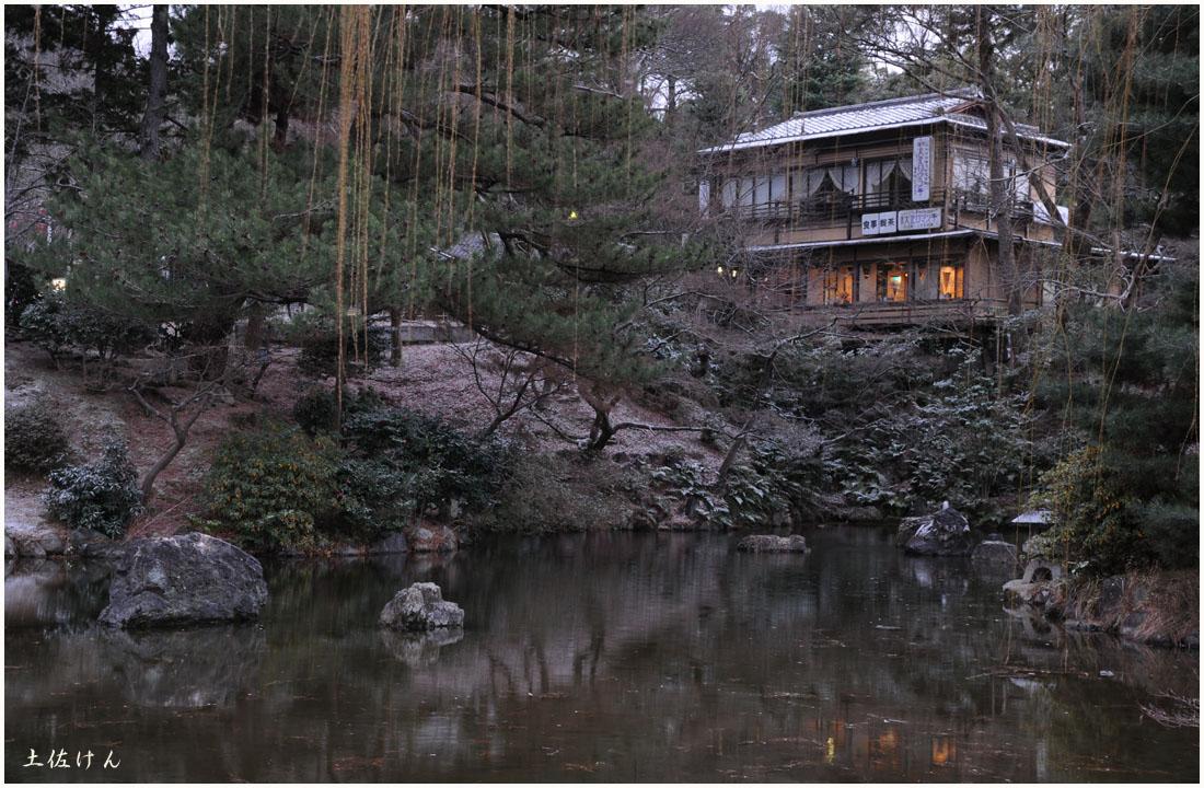 円山公園4