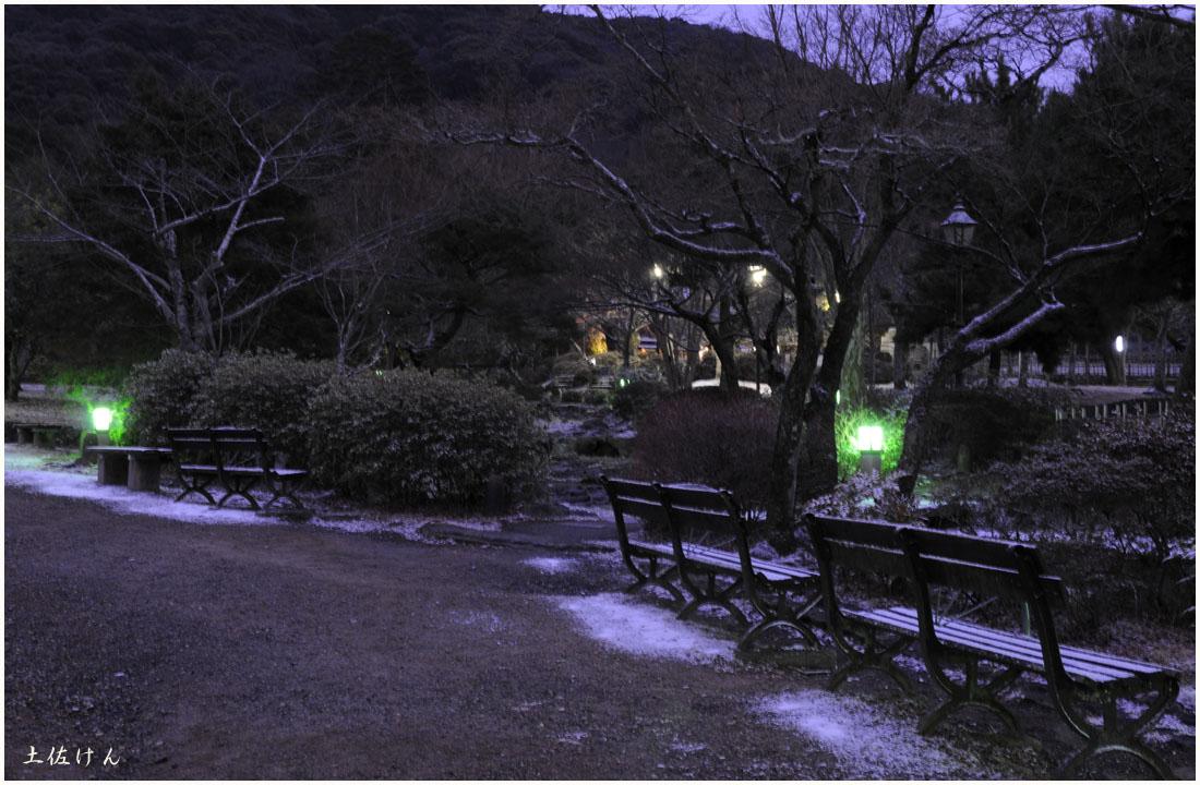 円山公園6
