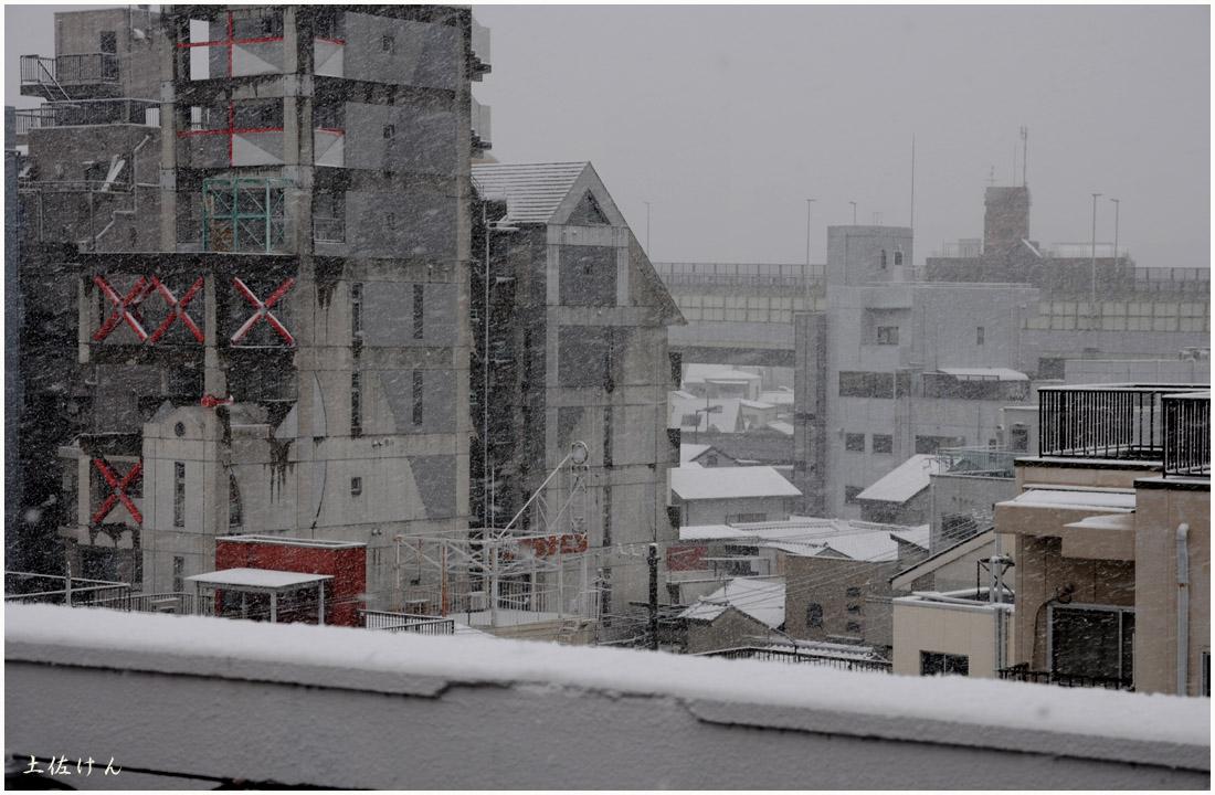 大阪の雪2