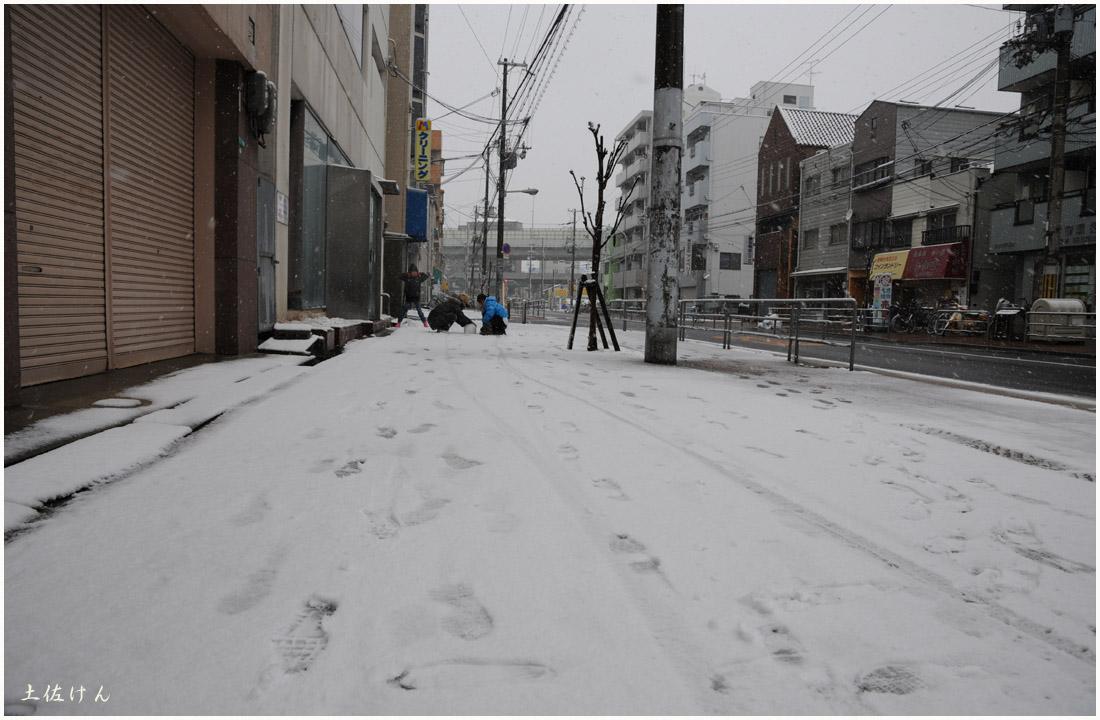 大阪の雪3