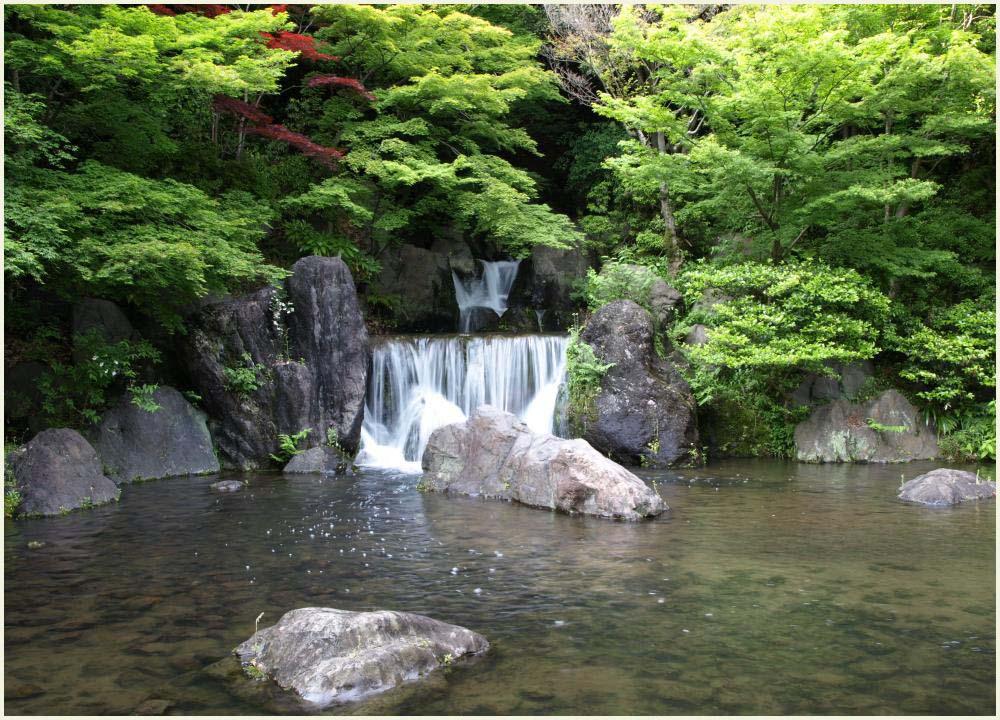 万博記念公園3