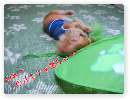 Photo1006087.jpg
