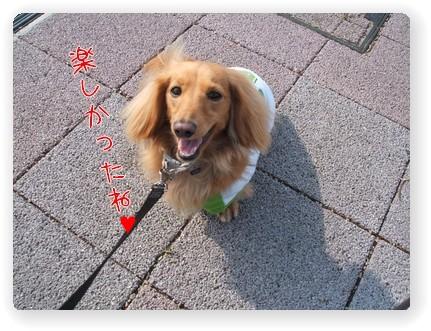Photo1006121.jpg