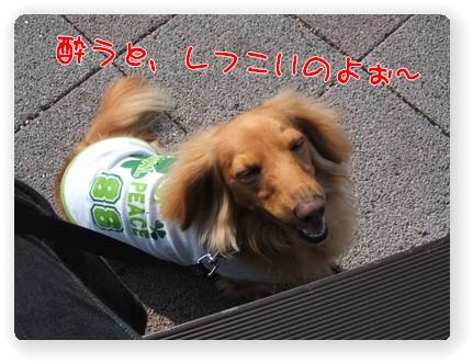 Photo1006125.jpg