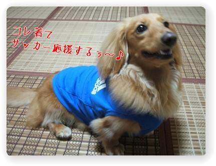 Photo1006155.jpg