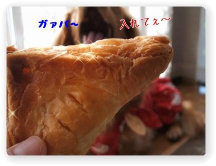 Photo1006165.jpg