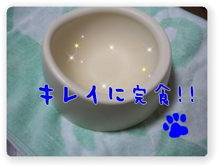 Photo1006266.jpg