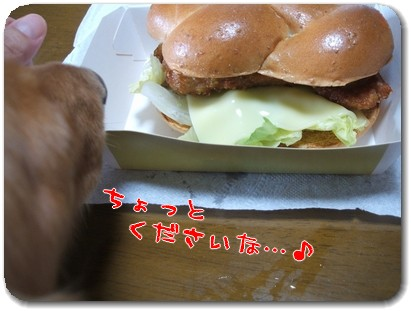 Photo1008113.jpg